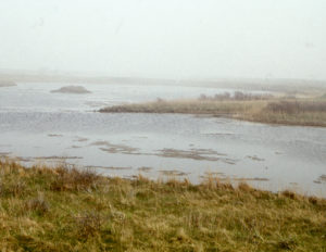 Landschaft 15